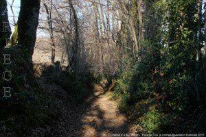 Chemin d'Alzen (803m)