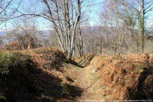 Chemin des Brougues (1200m)