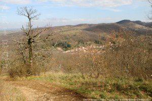Chemin de Dalou (362m)