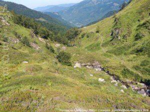 Ruisseau du Fouillet (vers 1600m)