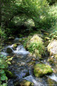 Ruisseau d'Arros (960m)