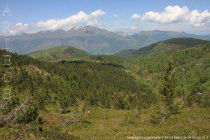 Mont Redon vu de Piparlan (1891m)