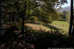 Chemin - Serres-sur-Arget