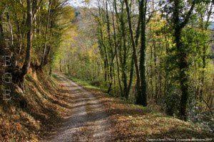 Chemin d'Aret (750m)
