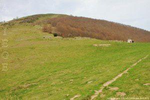 Col de l'Arraing (1351m)