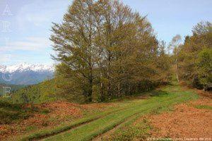 Col de la Crouzette (1244m)