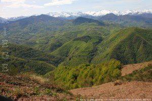 Vue sur la vallée de l'Arac - Cabane de Moncaut (1225m)