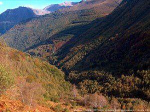 Vallée de l'Artigue (vers1200m)
