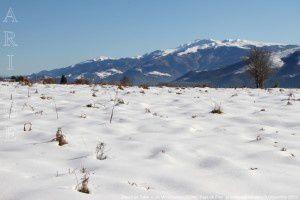 Massif de Tabe vu de Montcoustan (920m)