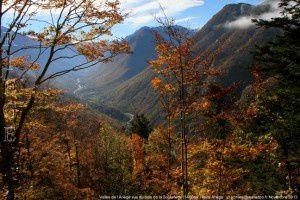 Vallée de l'Ariège vue du bois de la Soulanette (1400m)
