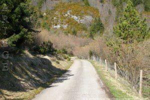 Route des Sapins