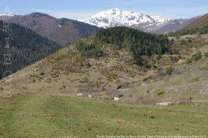 Pic de Soularac (2368m) depuis le col du Boum (1320m)