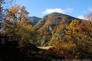 Chemin (1350m)