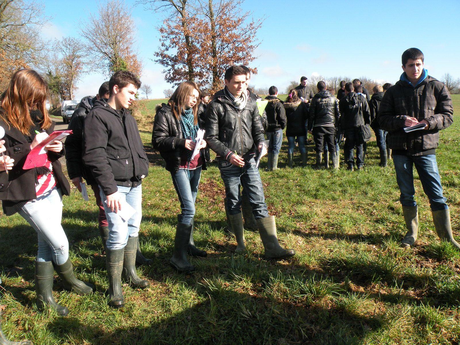 Lutte contre l'érosion des sols à l'exploitation agricole d'Almayrac