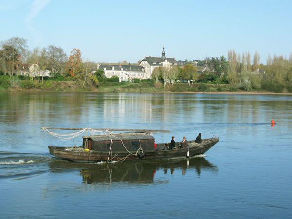 La Loire, fleuve sauvage
