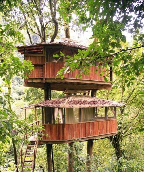 une cabane dans les arbres pour les enfants 5 astuces pour la fabriquer hightechdiffusion. Black Bedroom Furniture Sets. Home Design Ideas