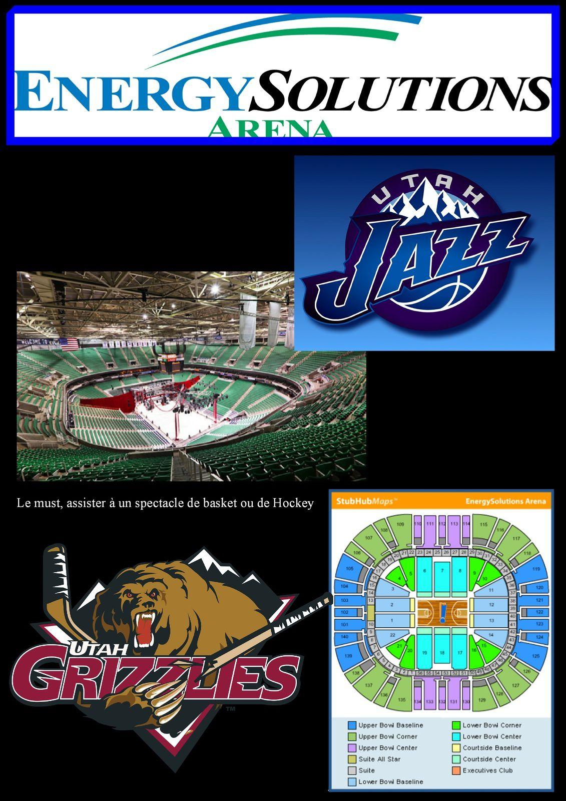 La EnergySolutions Arena est une salle omnisports. Depuis 1991, ses locataires sont les Jazz de l'Utah, qui évoluent actuellement en NBA, et les Utah Blaze de l'Arena Football League. Ce fut également le domicile des Utah Starzz (WNBA), qui depuis 2002 jouent à San Antonio, mais aussi des Grizzlies de l'Utah (Ligue internationale de hockey) entre 1995 et 1997 puis des Salt Lake Golden Eagles (Ligue internationale de hockey) entre 1991 et 1994. Sa capacité est de 19 911 places pour le basket-ball, 14 000 pour le hockey sur glace et le football américain en salle, avec 56 suites de luxe et 668 sièges de club.