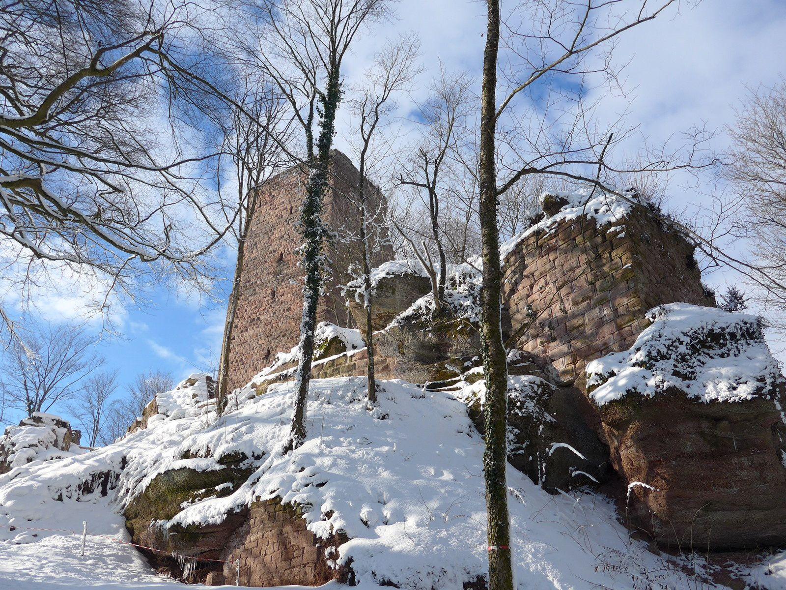 L'arc de décharge du château (grand Géroldseck) dégagé (en été) par l'association Pro Geroldseck, grand coup de chapeau à ces bénévoles
