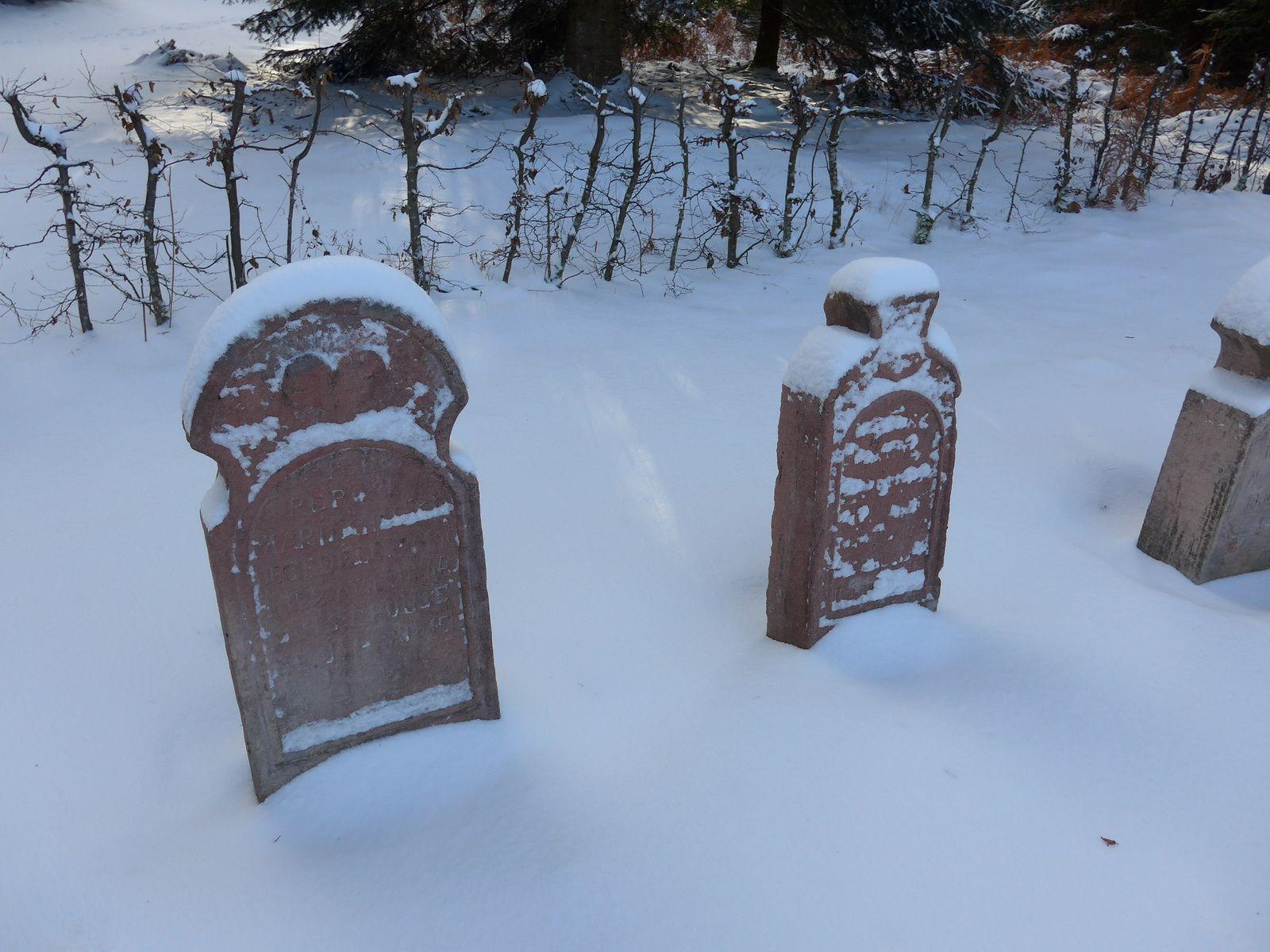 Ce cimetière à Salm est abandonné, en pleine nature