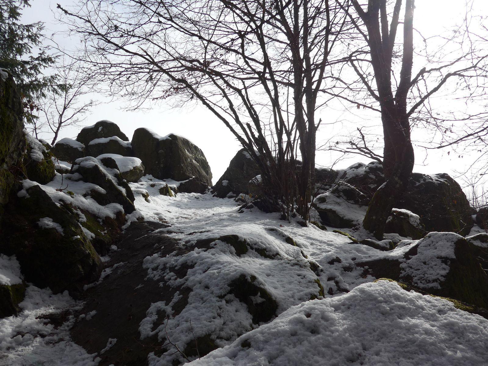 Vu le nombre d'abris pour chasseurs, les animaux doivent pulluler, on s'en rend bien compte en voyant les traces laissées dans la neige.