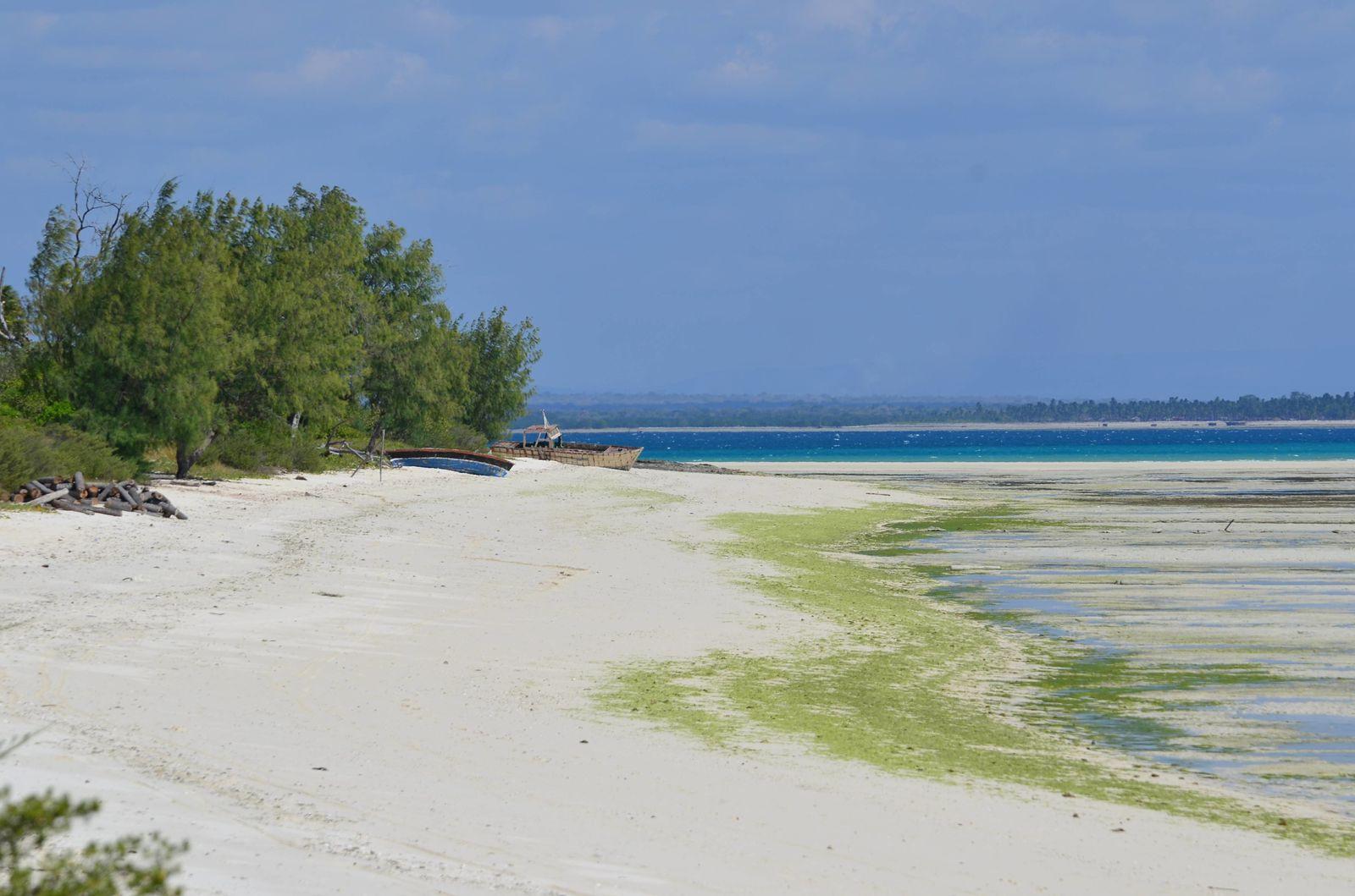 11/06/2013 - L'île tropicale de Matemo