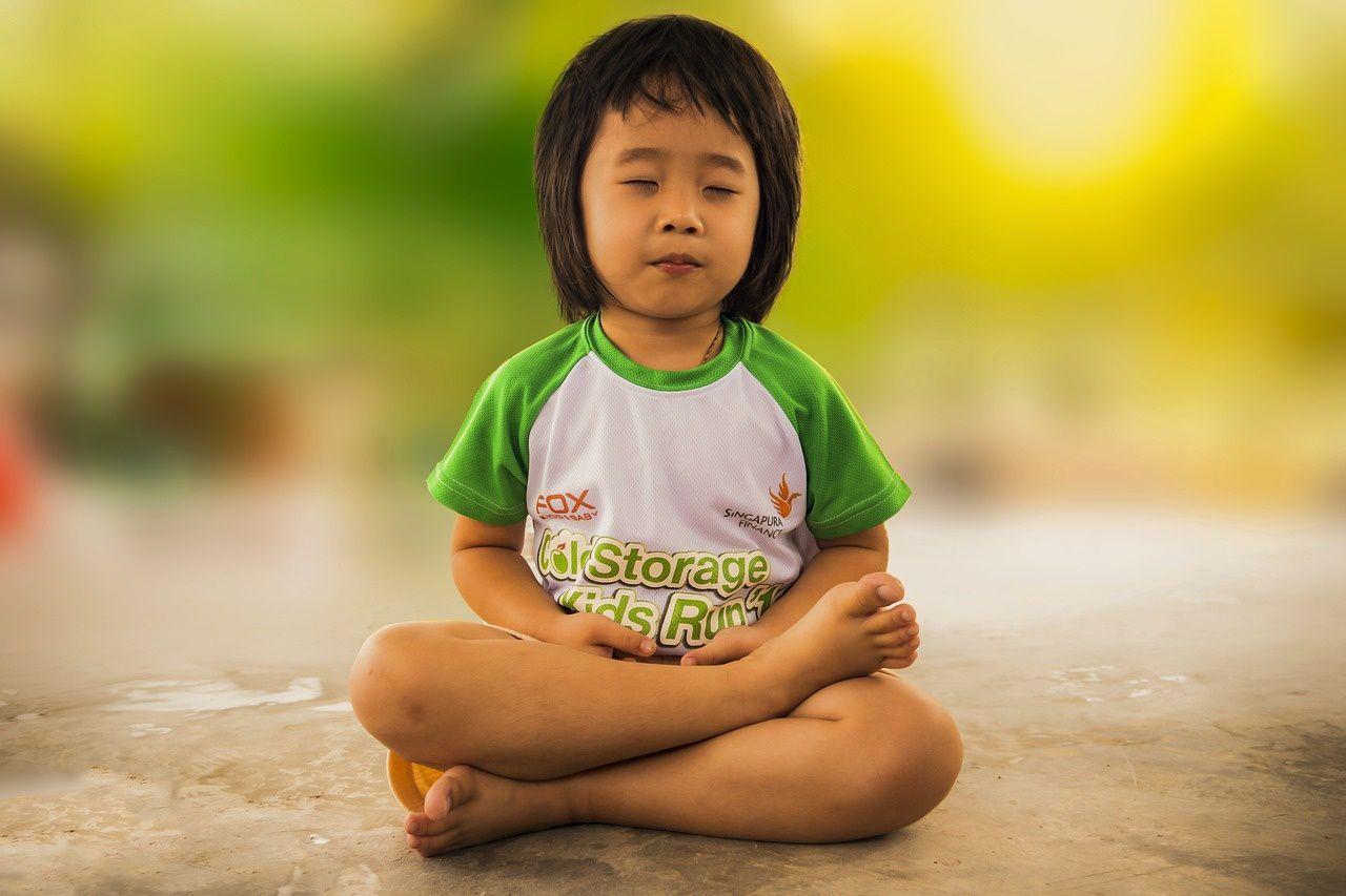 Méditation ou violence ? citation du Dalaï Lama