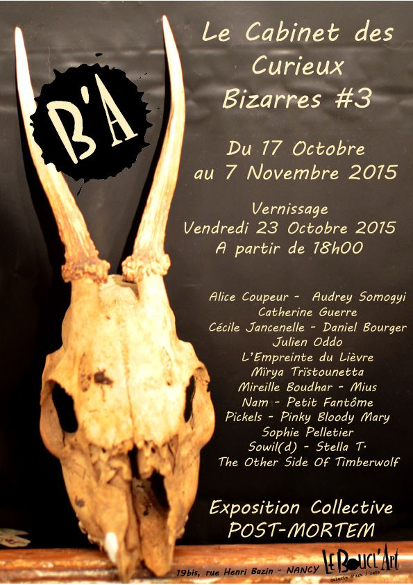 VERNISSAGE - LE CABINET DES CURIEUX BIZARRES #3 - Vendredi 23 Octobre 2015 à partir de 18h00 ...