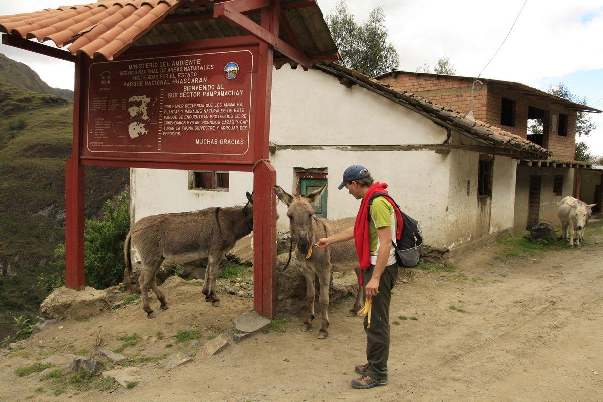 Slava qui nourrit les mules avant de partir