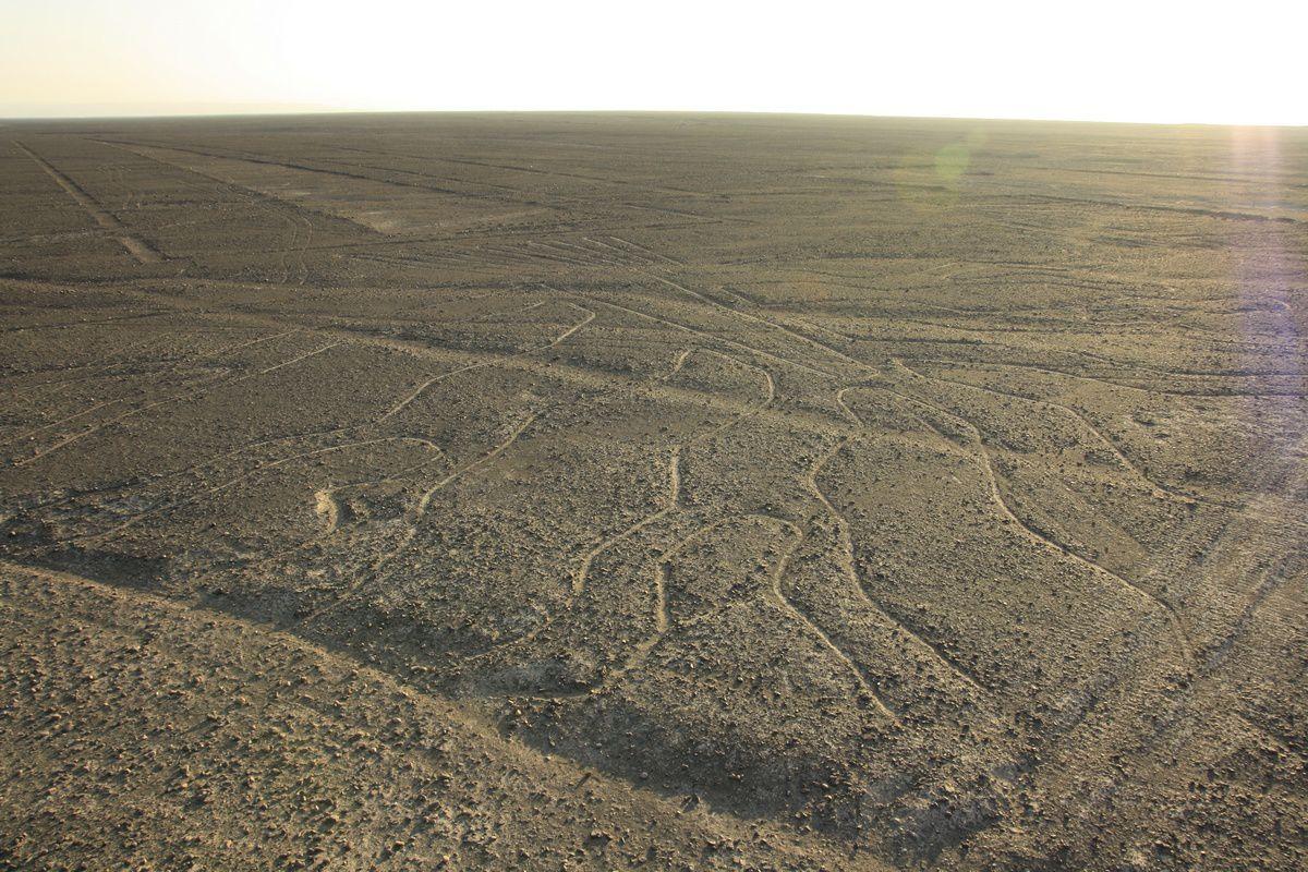 Les lignes de Nazca de plus près
