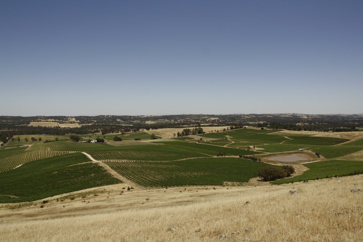 Quarry Hill Lookout