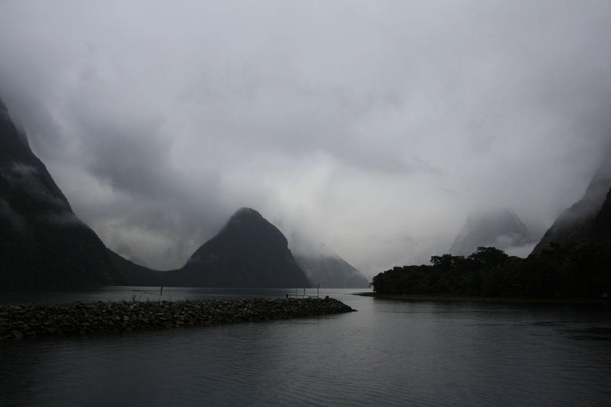 Les bogoces dans les Fiords