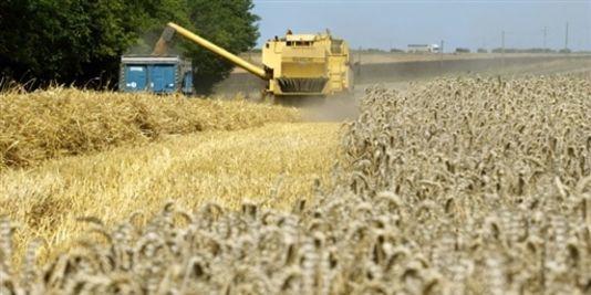 SCANDALEUX !!! certains agriculteurs ont eu le toupet d'acheter des semences, de les semer !!!