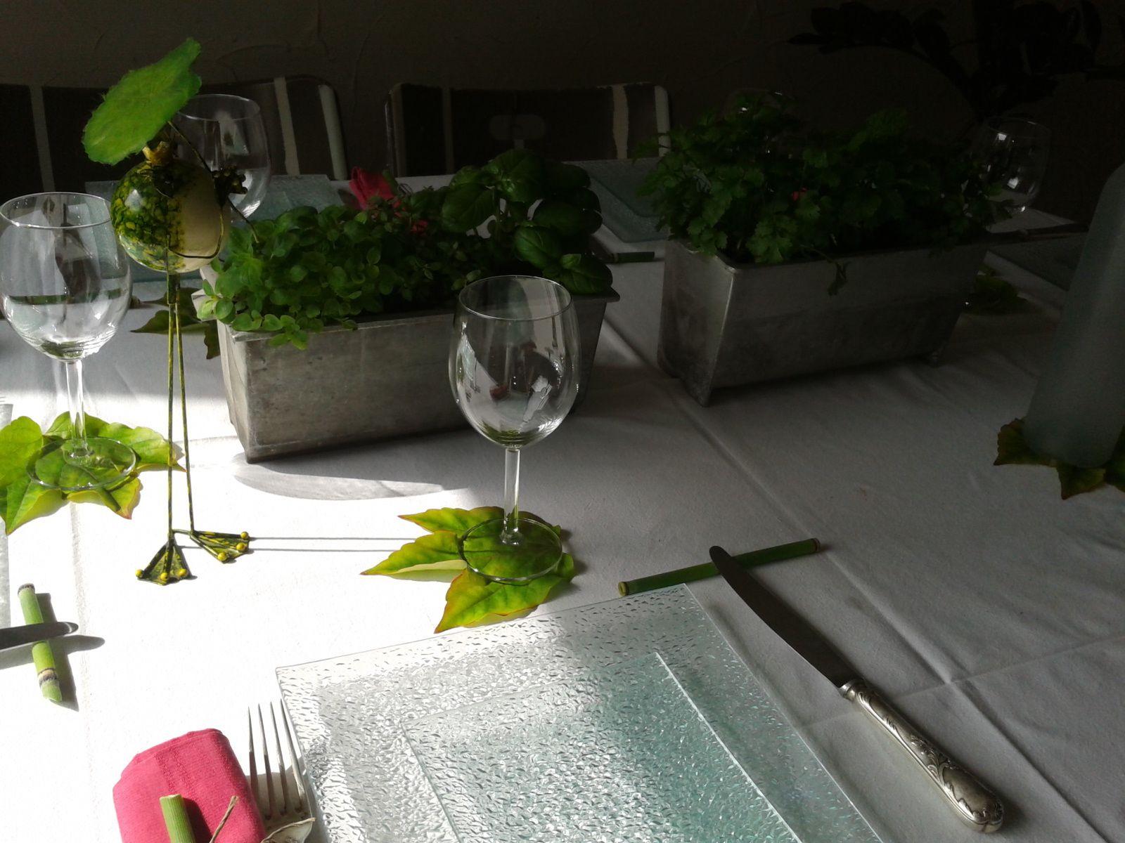 petites herbes aromatiques de ma terrasse....