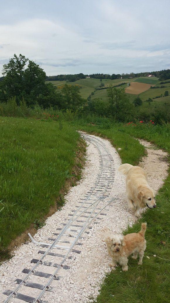 Spirit Track - Pose des heurtoirs et travaux de voie (33)