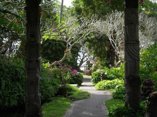« Les arbres nous enseignent la patience: ils ne baissent pas les bras à la première tempête venue. » de Carl Beaupré