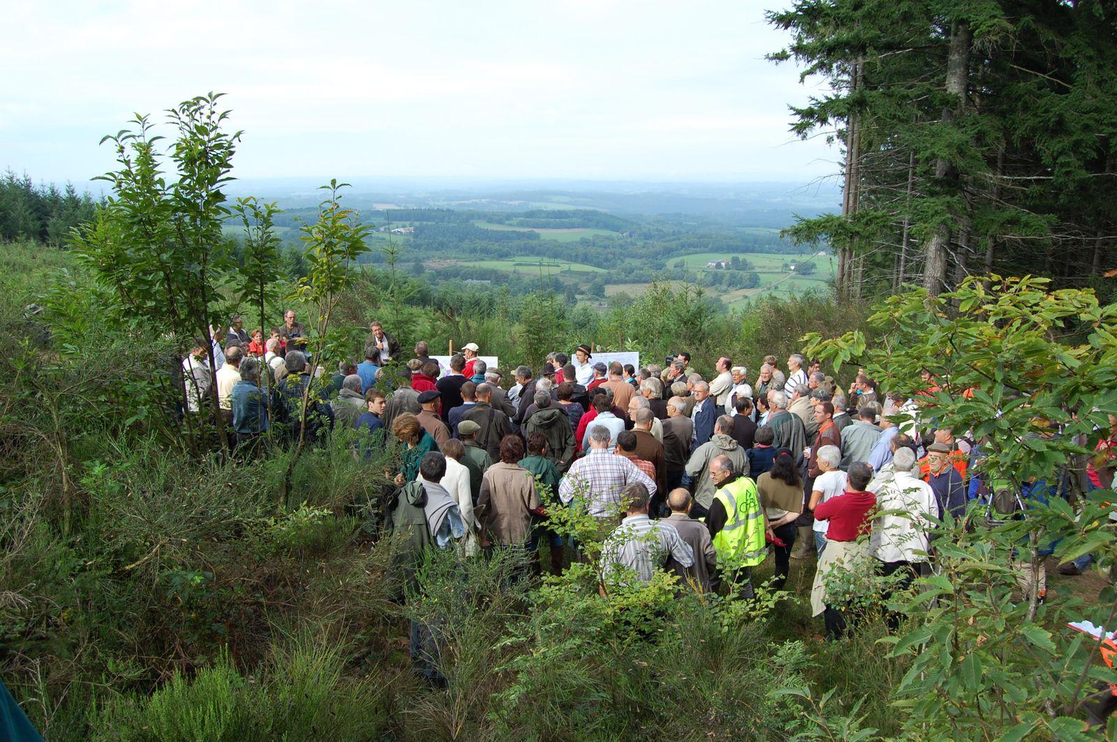 Journée forestière en 2011