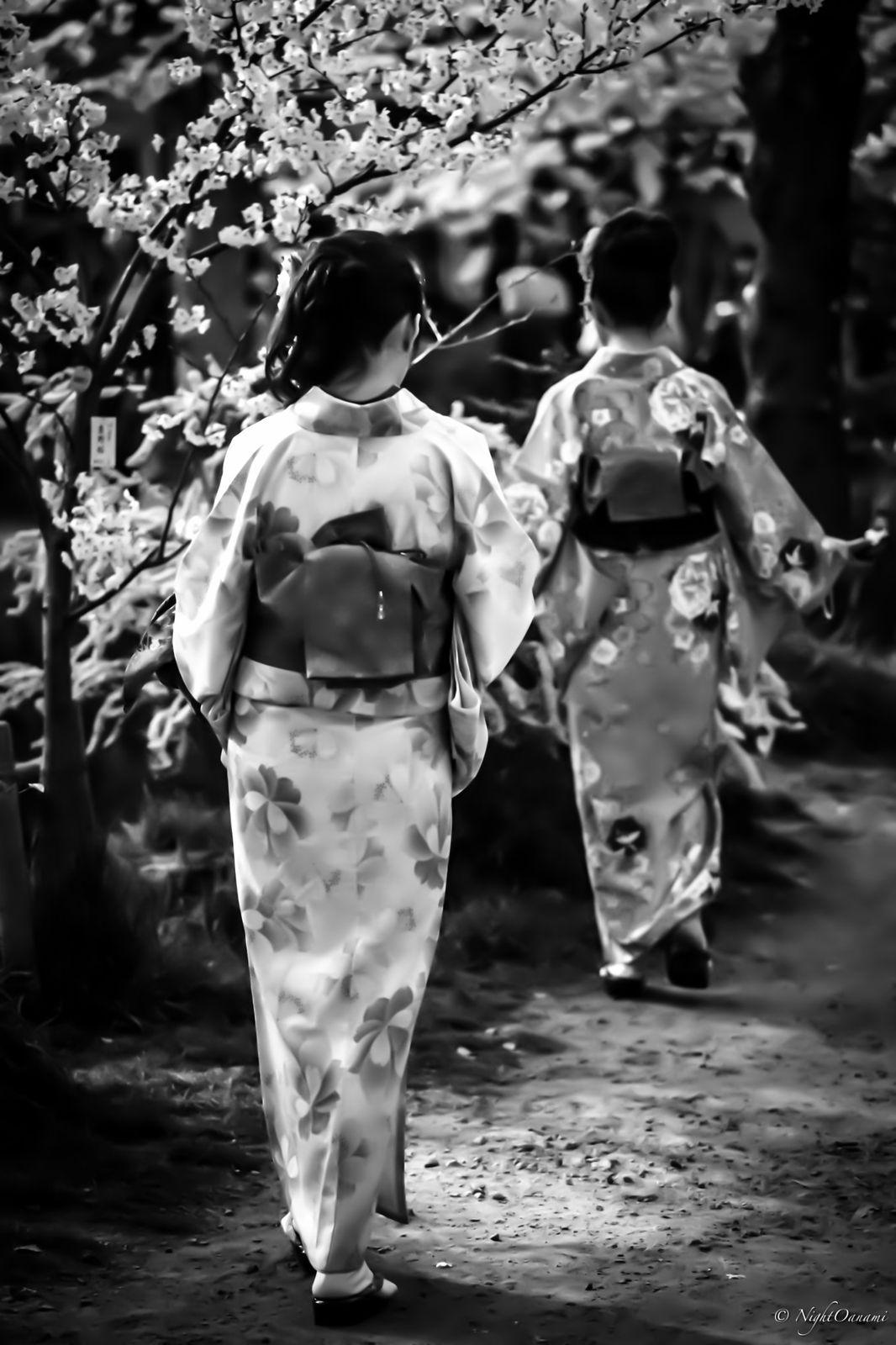 Sur le JAPON