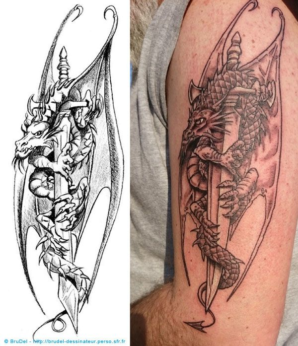 Dessin Dragon Tatouage tatouage dragon - brudel dessinateur, coloriste, infographiste