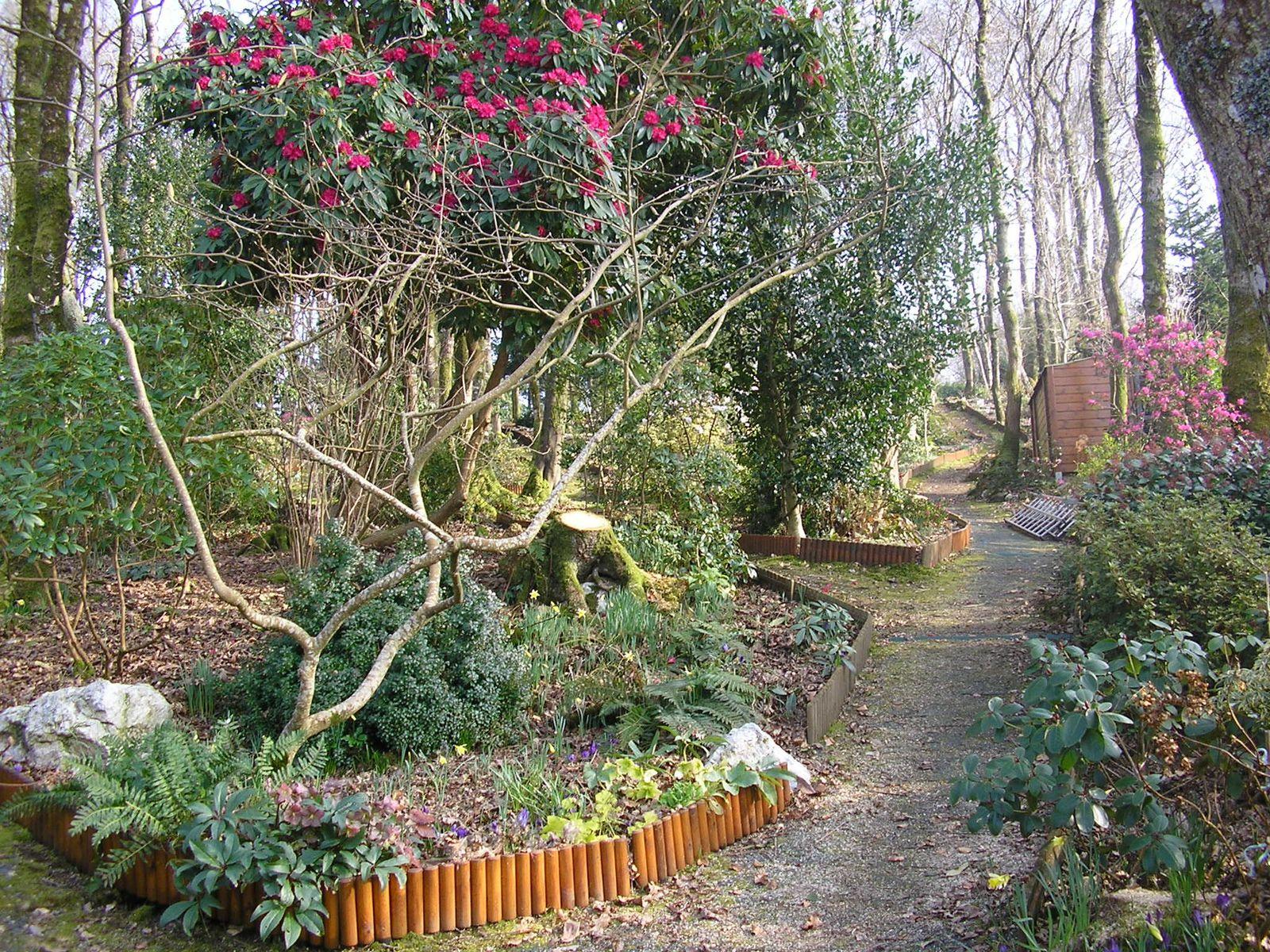 Le jardin de mes parents