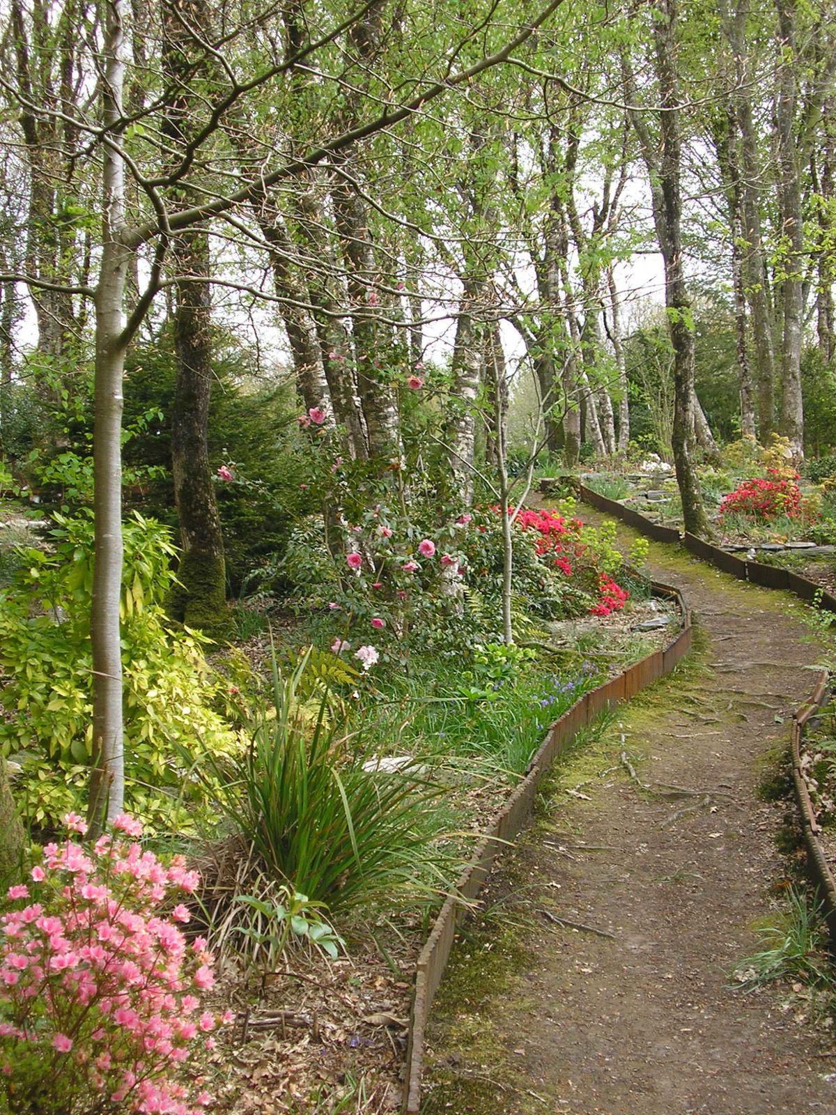 Le jardin de mes parents au mois de mai