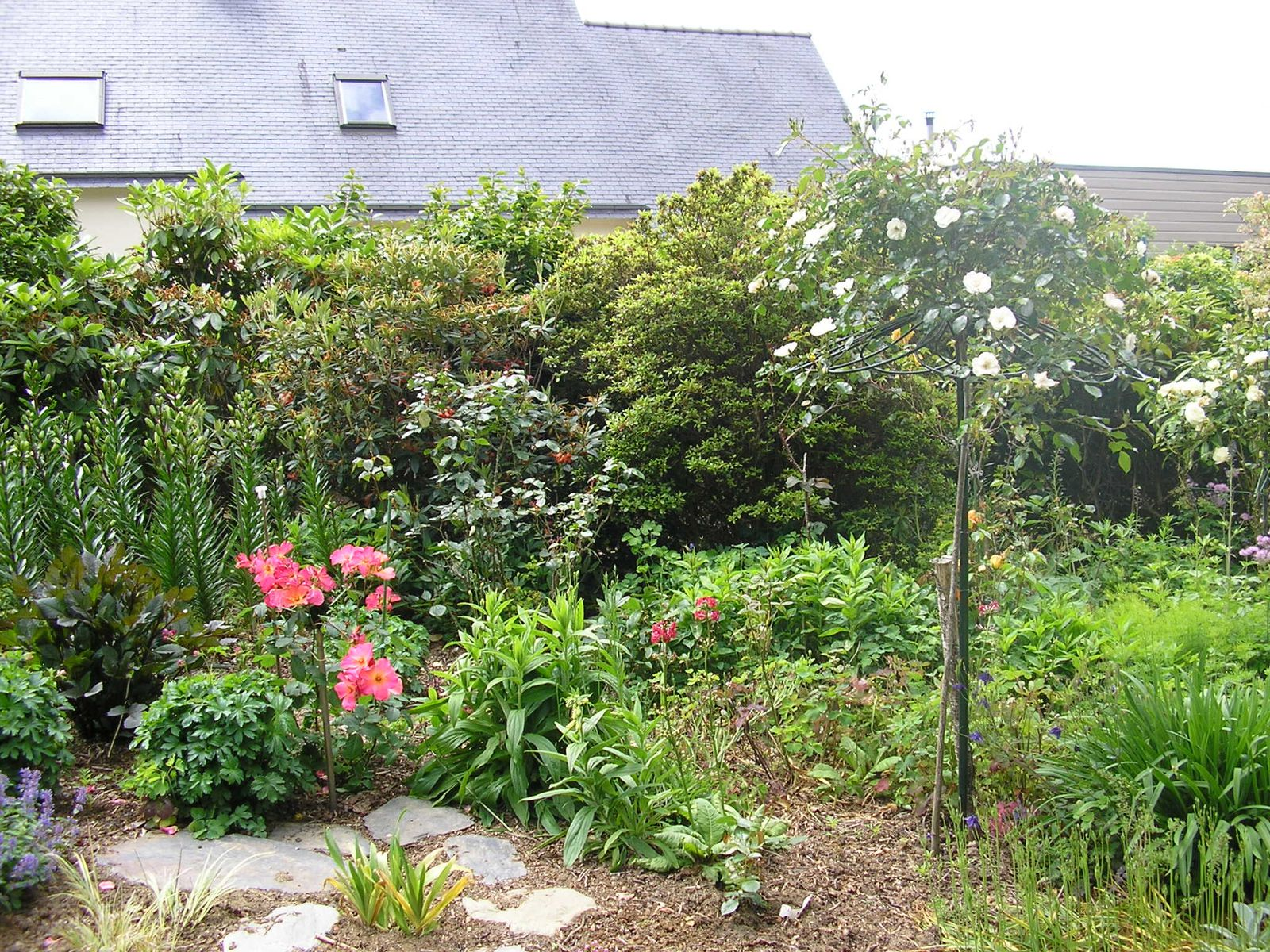 Le jardin de mes parents en juin