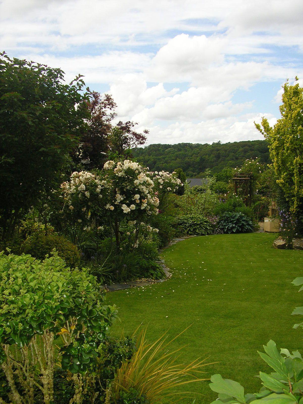 Le jardin de mes parents au mois de juin
