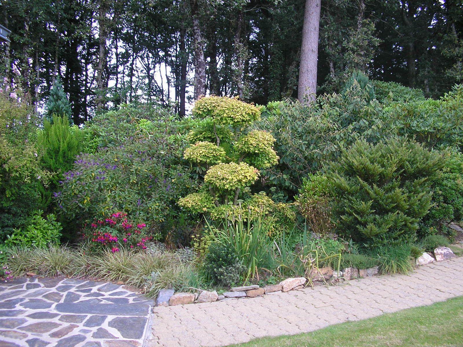 Le jardin de mes parents (fin août)