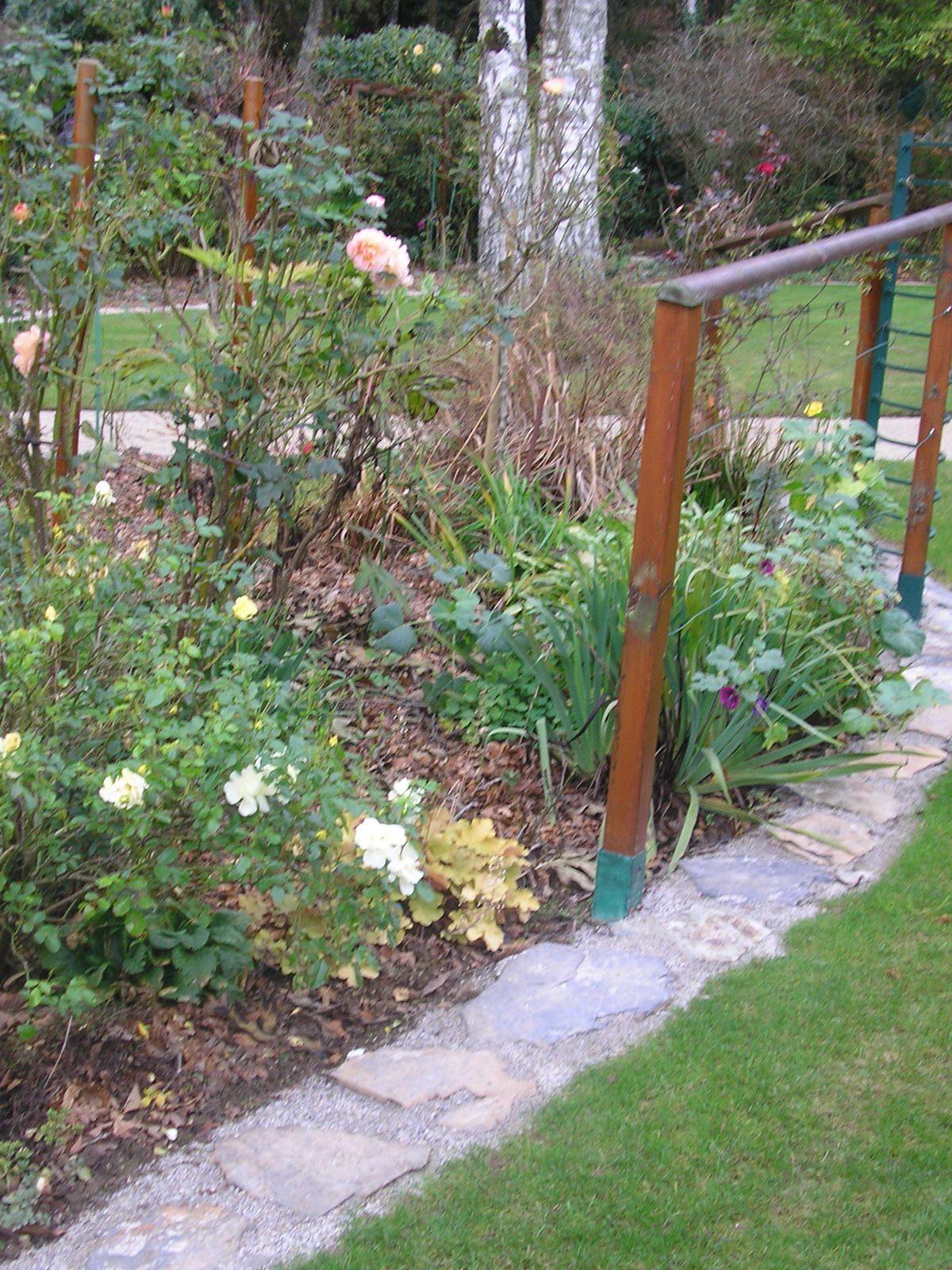 Le jardin de mes parents en novembre