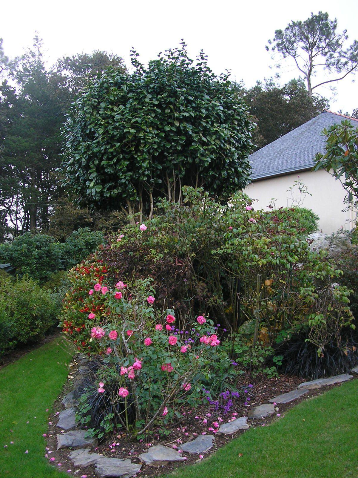 Rétrospective 2014-2015 Jardin de mes parents