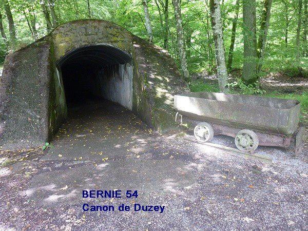 Les photos sont issues du site de Duzey et sont ma propriété .