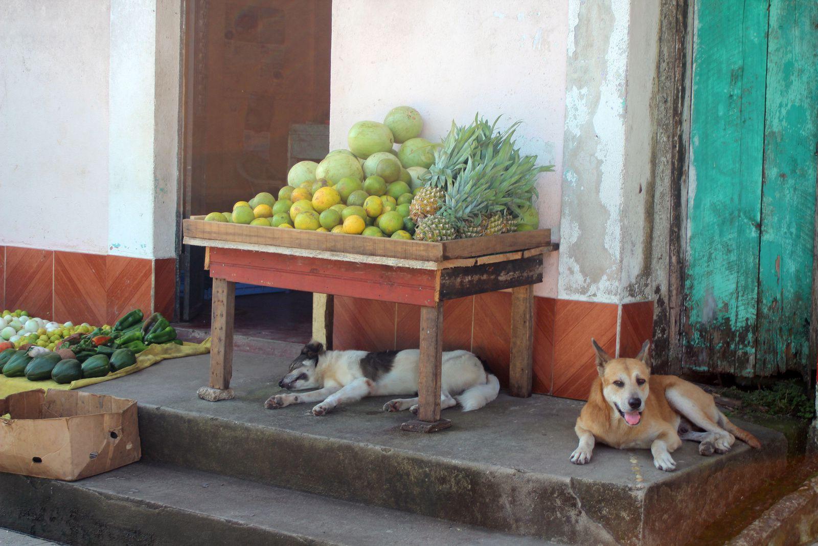Visages guatémaltèques
