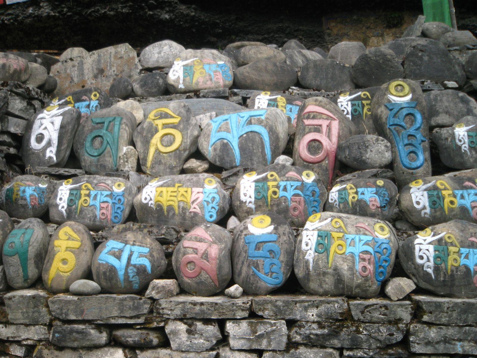 A la découverte de l'Himalaya: le tour des Annapurnas - la