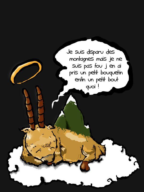 Le bouquetin des Pyrénées
