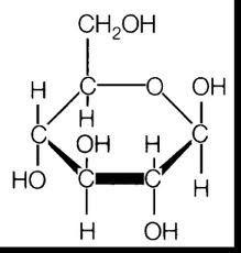 Le glucose se compose de 6 atomes de carbones, 12 hydrogènes et 6 oxygènes.